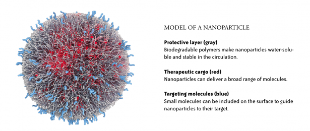 ACCURINS® nanoparticle image courtesy of BIND Therapeutics